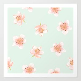 Pale Pink Cherry Blossoms On Pastel Robin's Egg Blue Continuos Art Print