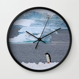 Gentoo Penguin in Front of Icebergs Wall Clock