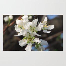 Plum Blossoms Rug