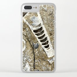 Rock Fossil Clear iPhone Case