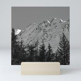 Gwin's Winter Vista - B & W Mini Art Print
