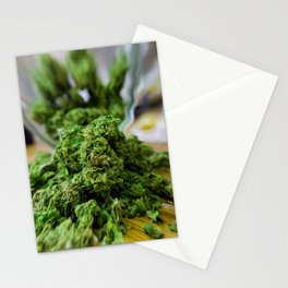 High and Mighty Medicine Woman Stationery Cards
