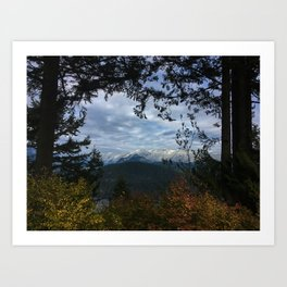 That view Art Print