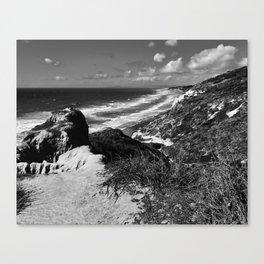 Torrey Pines I Canvas Print