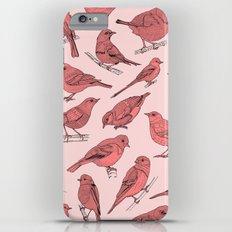 Birds Slim Case iPhone 6s Plus