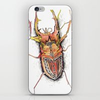 beetle iPhone & iPod Skins featuring Beetle by Cherry Virginia