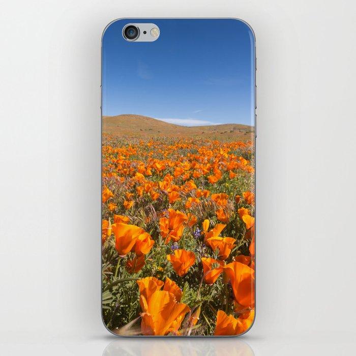 Blooming poppies in Antelope Valley Poppy Reserve iPhone Skin