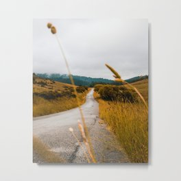 The Roadside Path (Color) Metal Print