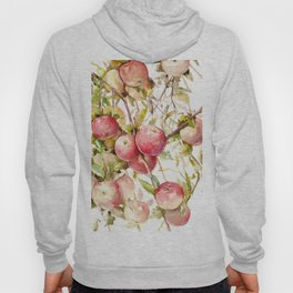 Apple Tree, kitchen design red olive green kitchen fruits Hoody