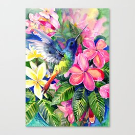 Hummingbird and Plumeria Florwers Tropical bright colored foliage floral Hawaiian Flowers Canvas Print