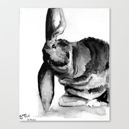 Thumper Canvas Print
