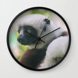 Philadelphia Zoo Series 11 Wall Clock