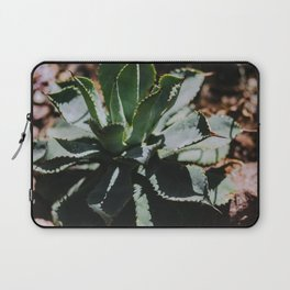 Succulents in the Hot Sun Laptop Sleeve