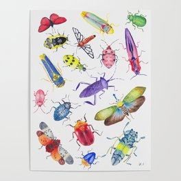 Colorful Bugs and Beetles Collection Poster