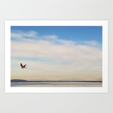 FREE SPIRITS HAVE TO SOAR ♡ Art Print