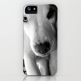 I Triple Dog Dare You iPhone Case