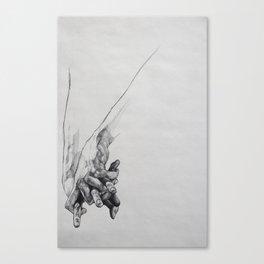 Hand Study 1 Canvas Print