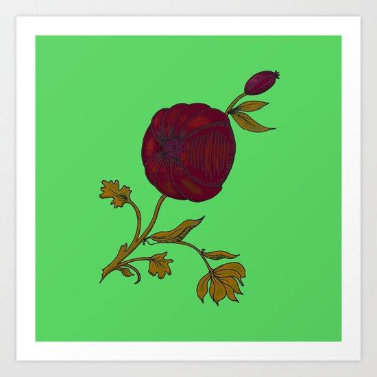 simple decorative pomegranate Art Print