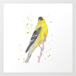 Yellow Bird Art Print