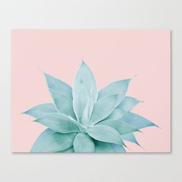 Blush Agave #4 #tropical #decor #art #society6 Canvas Print