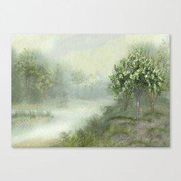 Misty Woodland Stream Canvas Print