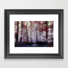The wonder Framed Art Print