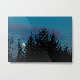 Full moon in the firs Metal Print