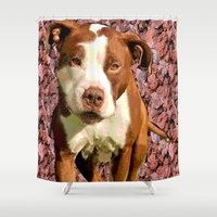 pitbull Shower Curtains featuring Pitbull on Pink Background by Whimsy Notions Designs