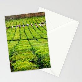 Porto Formoso tea gardens Stationery Cards