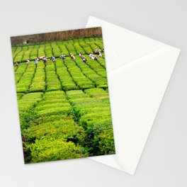 Porto Formoso tea gardens Stationery Cards