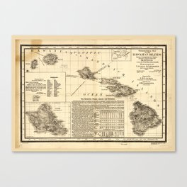 Topographical map of the Hawaiian Islands (1893) Canvas Print
