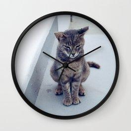kitty in the island Wall Clock