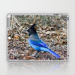True Blue Laptop & iPad Skin
