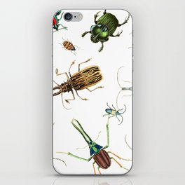 Bug Life - Beetles - Bugs - Insects - Colorful - Insect Pattern iPhone Skin