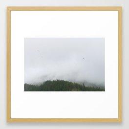 Birds of Alaska Framed Art Print