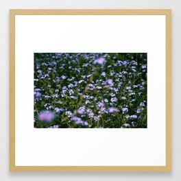 Purple Flowers Framed Art Print