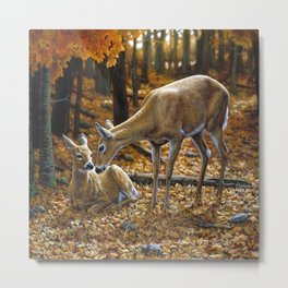 Whitetail Deer and Fawn in Autumn Metal Print