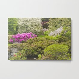 Asticou Azelea Garden, Northeast Harbor, Mount Desert Island Maine Metal Print