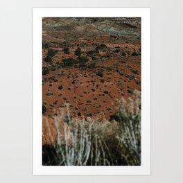 Desert Sun Art Print