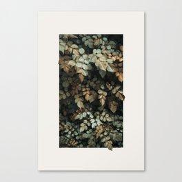 Growth (Autumn) Canvas Print