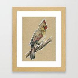 State Bird Series: Illinois - Cardinal Framed Art Print