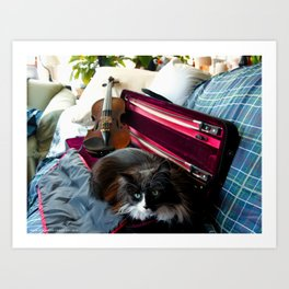 The Cat and the Fiddle (Gracie Queen of Chicago Collection) Art Print