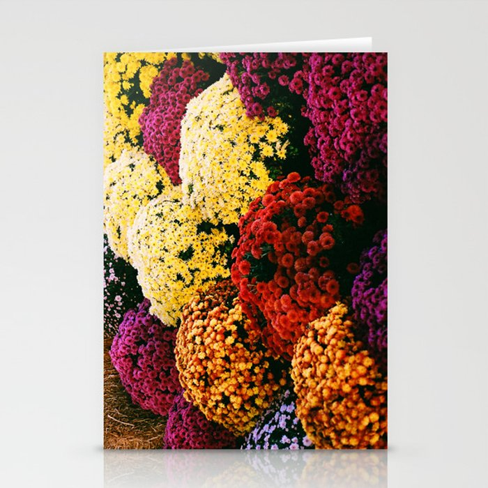 Fall Mums Stationery Cards