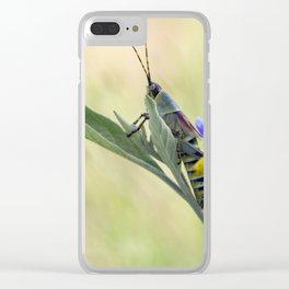 grasshopper  close up Clear iPhone Case