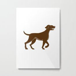 English Pointer Dog Pointing Up Retro Metal Print