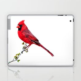 Perched Bird - Cardinal Laptop & iPad Skin