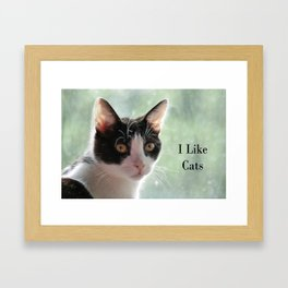 I Like Cats Framed Art Print