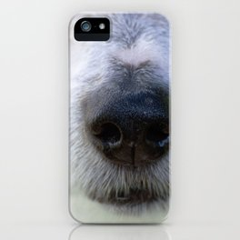 It's a Jack Russell iPhone Case
