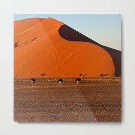 Big Daddy Dune at Sossusvlei, Namibia Metal Print