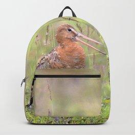 Watercolor Bird, Godwit 05, Akureyri, Iceland Backpack